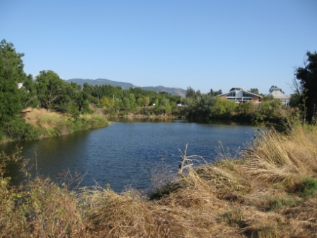 Westin Verasa Napa river view