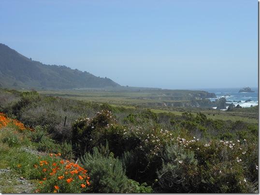 Central Coast-Big Sur 271