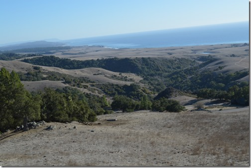 Hearst Castle road view