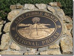 Carmel-Pebble Beach Jan 2009 098