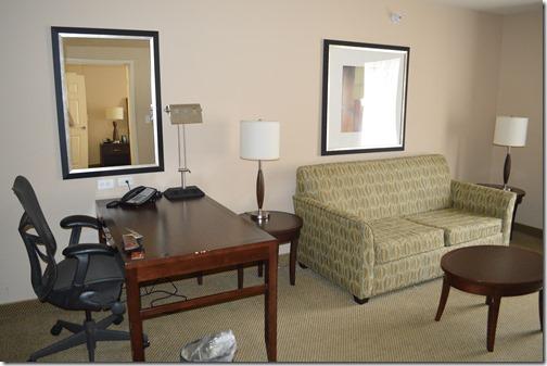 HGI suite-1