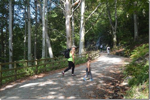 Floyen trail