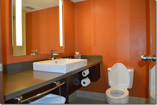 Rad SLC bathroom