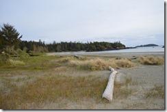 MacKenzie Beach-2
