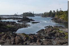 Wild Pacific trail-2