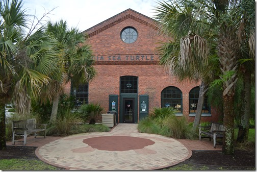 Georgia Sea Turtle Center building