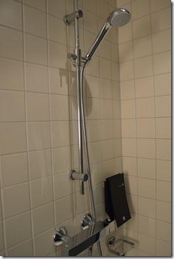 Clarion BGO shower-2