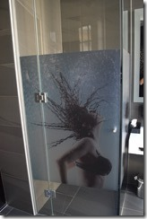 No 13 Shower door