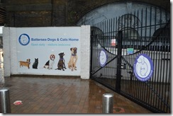 Battersea Dogs-Cats Home