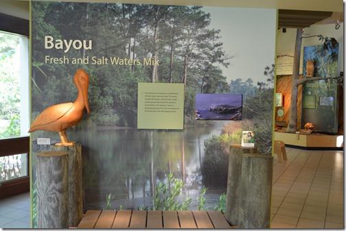 Bayou exhibit
