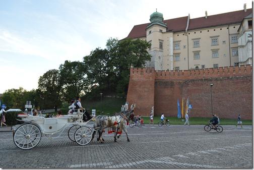 Krakow horse carriage