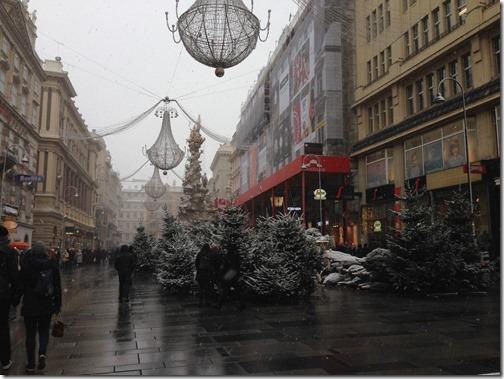 Wien xmas trees