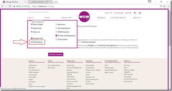 WOW Air check-in