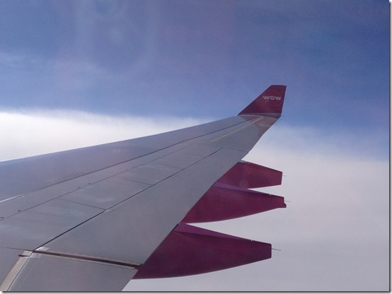 WOW Aircraft wing