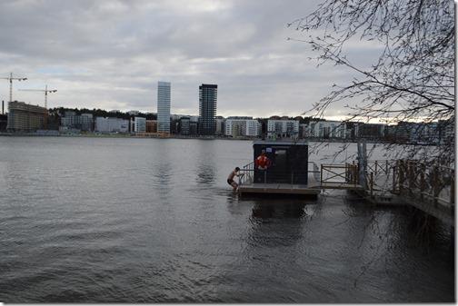 Stockholm Dip
