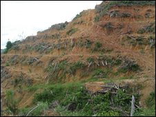 BBC barren hill