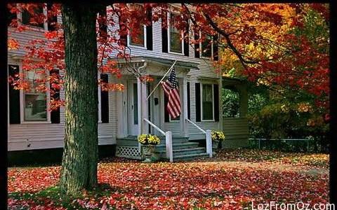 2013 Autumn Leaves on the East Coast – Countdown