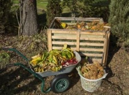 Composting Mistakes You Can't Afford To Make