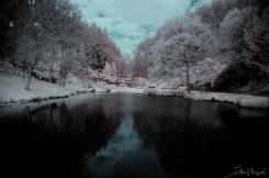 park infrared2