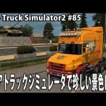 ロシアトラックシミュレータで珍しい景色に遭遇 【 Euro Truck Simulator 2 実況 #85 】[ゲーム実況byアフロマスク]