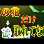 【1/27】なぜこの花だけ取れてないの!? 3DS UFOキャッチャー バッジとれーるセンター実況 本練習台・どうぶつの森お花台[ゲーム実況bygames tuthinoko]