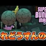 岩とトゲのコンボが絶体絶命過ぎたww【Super Bunny Man:SK実況12】[ゲーム実況byshow]