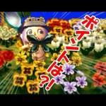 めざせ1位!! 今年最後のムシとり大会♪ 【とびだせどうぶつの森amiibo+】[ゲーム実況byななこ]