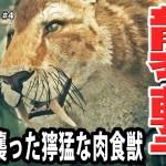【Ancestors】家族で仲良くジャングルを歩いていたら肉食獣が襲ってきて最悪の事態発生【アフロマスク】[ゲーム実況byアフロマスク]