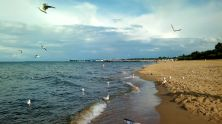 35 La plage Jelitkowo