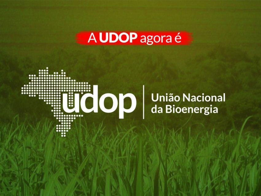 logo_2019_udop.jpg