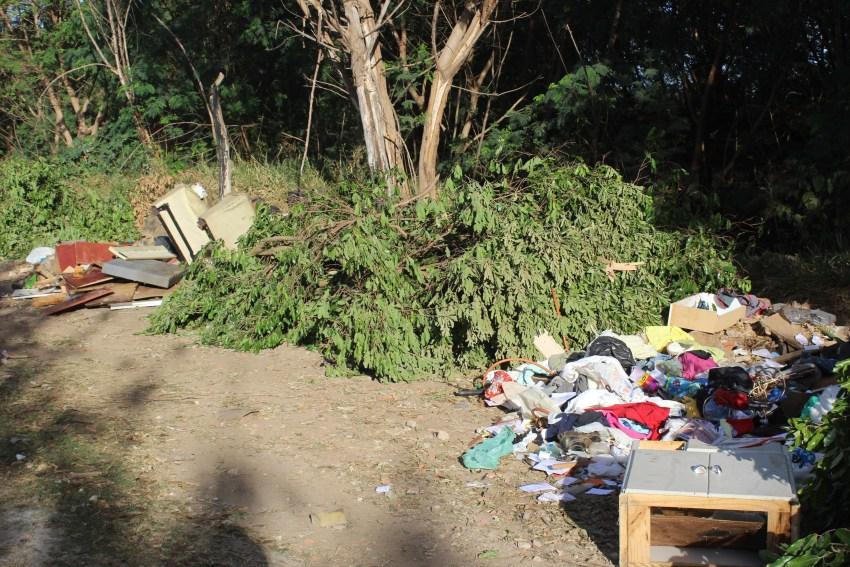 Lixo descartado (17)
