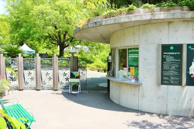 Makino_Botanical_Garden (12)