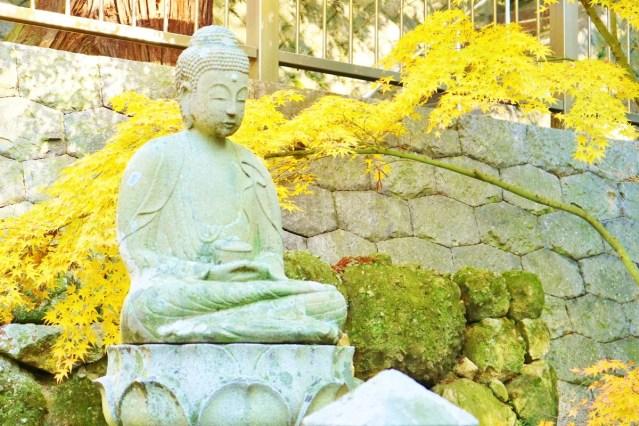 Yakuri_ji (15)