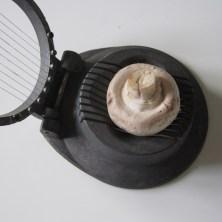Champignon i en æggedeler, sådan kan man nemt skære den i pæne tynde skiver