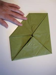 DIY Lotus sesrviet0,6