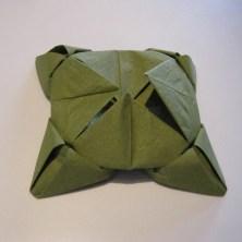 DIY Lotus sesrviet3,1