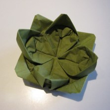 DIY Lotus sesrviet3,3