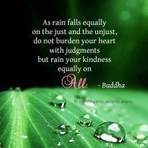 rain buddha