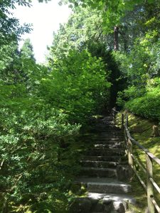 Portland Japanese Garden garden path of stone stairs, a wooden guiderail, and lots of green leaves. Bue sky