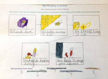 Worksheet from the sequencing activity