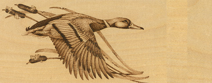 mallard duck wood burning