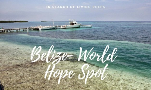 Belize- World Hope Spot