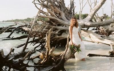 Florida Film Takeover | Driftwood Beach, Florida | Sarasota Film Photography