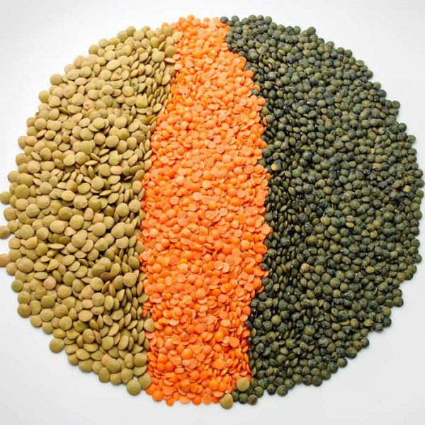 We supply Canadian Red and Green Lentils. Buy Black lentils for sale online at very good rate. We are Worldwide Supplier of Canadian Lentils.