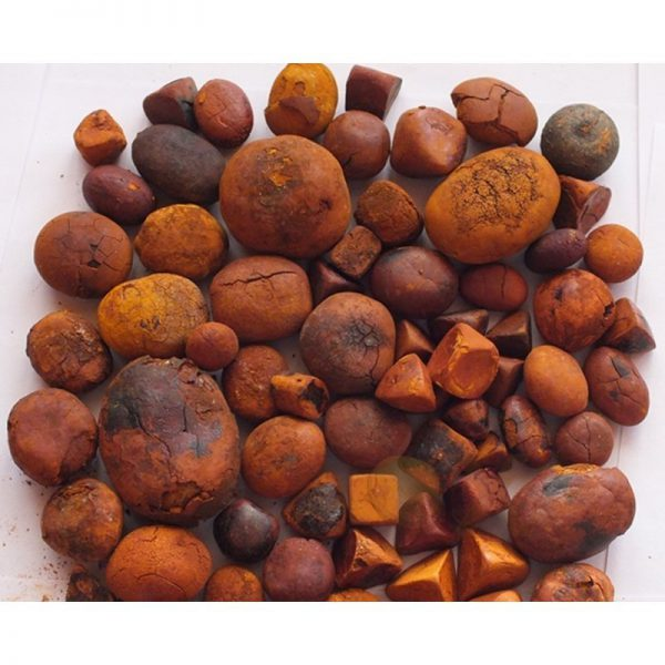 We are Top supplier of Quality Natural Ox Cattle/Cow Gallstones. We have available Quality Dried Ox Gallstones for sale Online at cheap price