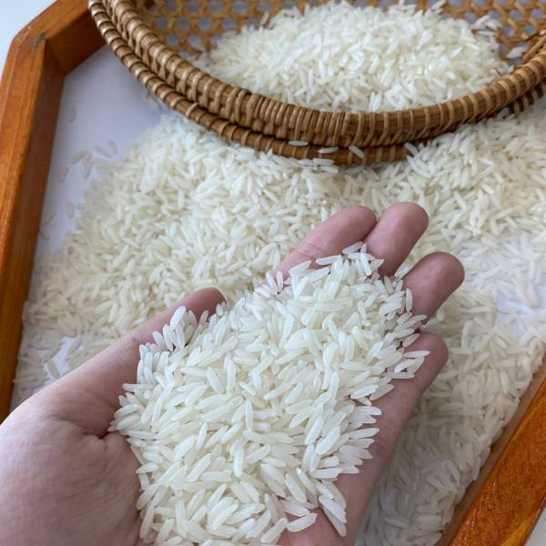 Premium Long Grain Rice with Long grain Perfume Rice and Fragrant Rice available for sale at competitive price with Super Kernal Basmati Rice Available.