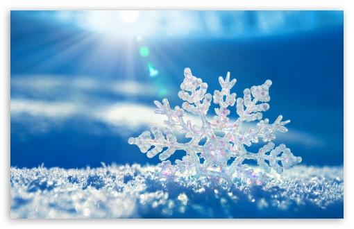 snowflake-t2