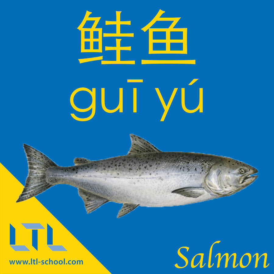 Salmon in Chinese