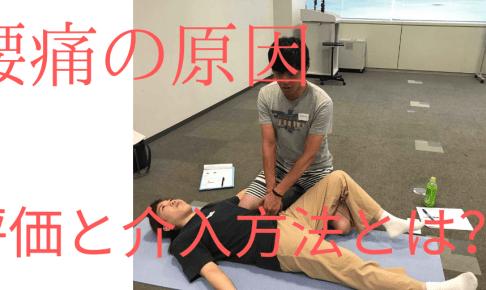 腰痛の原因 評価、介入方法とは?