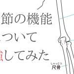 肘関節の機能と解剖について勉強してみた